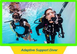 Adaptive Support Diver
