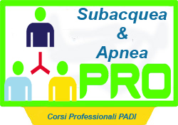 PADI professional courses
