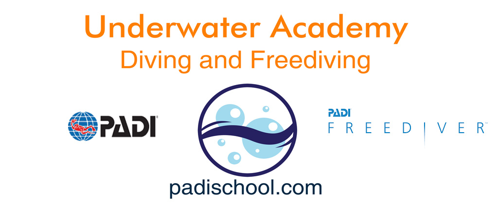 Underwater Academy. All rights reserved - VAT MT23682113 - Island of Malta